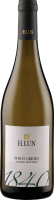 Pinot Grigio DOC 2019 - H. Lun
