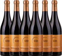 6er Vorteils-Weinpaket - Appassimento Negroamaro Primitivo 2019 - Luna Argenta
