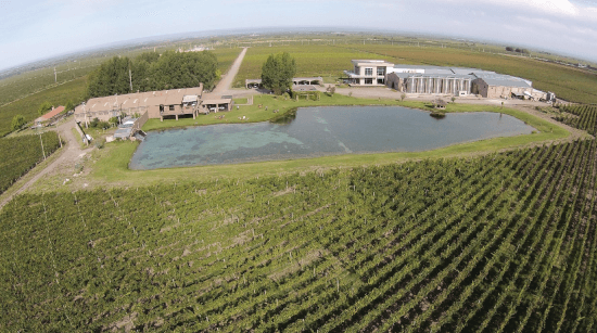 The entire estate of the Domaine Bousquet in Argentina