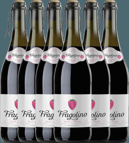 6er Vorteils-Weinpaket - Fragolino Valle Calda Frizzante - Vinicola Decordi