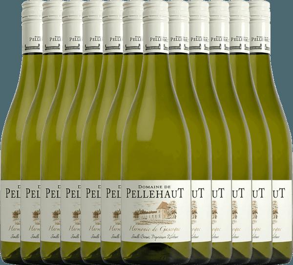 12er Vorteils-Weinpaket - Harmonie de Gascogne Blanc 2019 - Domaine de Pellehaut