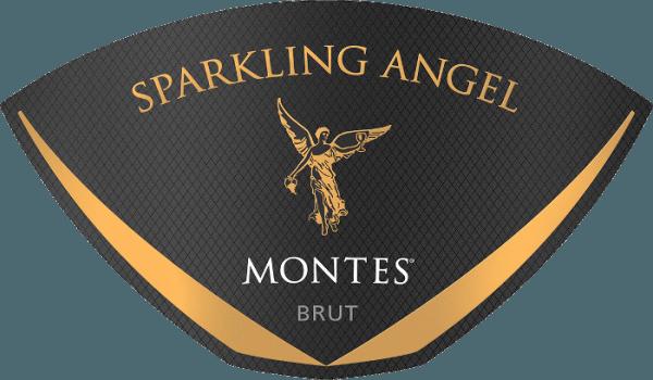 De Sparkling Angel van Montes is een prachtige, elegante mousserende wijn uit het Chileense wijnbouwgebied Zapallar. In het glas schittert deze wijn in een schitterend strogeel met sprankelende highlights en een langdurige perlage. In de neus ontvouwen zich heerlijk opulente aroma's van witte bloemen, vers geel fruit en tonen van gedroogd fruit. Daarnaast zijn er fijne nuances van toast en hints van hazelnoten en walnoten. In de mond is deze Chileense mousserende wijn zeer fijn met een knisperende body en een goede zuurgraad. De evenwichtige textuur is heerlijk romig en zijdeachtig. De aanhoudende afdronk overtuigt met fruit en frisheid. Vinificatie van de Montes Mousserende Engel Volgens de traditionele methoden van(Méthode champenoise) wordt deze mousserende wijn gevinifieerd. Van de gisting tot de opslag in de fles en het verlaten van de kelder wordt deze wijn uitsluitend met de hand gemaakt. De most voor deze wijn wordt eerst vergist in roestvrijstalen tanks. Voor de tweede gisting, met toevoeging van de tiragelikeur (gist en suiker), wordt de basiswijn gebotteld en in totaal 36 maanden in de kelder van Montes gerijpt. Door regelmatig schudden en draaien verzamelt de gist, die zich aanvankelijk op de bodem bevond, zich geleidelijk in de hals van de fles. Tenslotte wordt deze mousserende wijn gedegorgeerd. Dit houdt in dat de gistprop in de hals van de fles wordt bevroren en dat de fles wordt geopend. Het tekort bij het openen wordt aangevuld met een dosering voor de scheepvaart (suiker en wijn). Spijs aanbeveling voor de Sparkling Angel Montes Geniet van deze mousserende wijn uit Chili goed gekoeld als een welkom aperitief bij speciale gelegenheden. Of serveer deze wijn bij fruitige desserts en gistgebak.