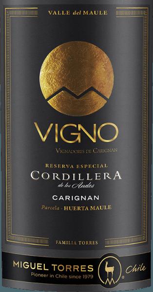 De druiven voor de single-varietal Cordillera Carignan van Miguel Torres Chili groeien in de Valle de Maule in het prachtige Chileense wijnbouwgebied Valle Central. In het glas straalt deze wijn een intens robijnrood met donkerrode accenten. Het aromatische bouquet wordt gedomineerd door rijpe, donkere bessen. Het weelderige bessenfruit wordt omhuld door fijne tonen van kruiden, specerijen en rook. Subtiele geroosterde tonen van eikenhout en een vleugje vanille komen erbij. Het aromatische fruit is ook heerlijk aanwezig in de mond en versmelt met de volle body tot een prachtige harmonie. De stevige, maar zachte tannines en frisse zuren zijn zeer goed geïntegreerd in de body. De ronde, harmonieuze afdronk overtuigt met een aangename lengte en een licht kruidige afdronk van munt en laurier. Vinificatie van de Torres CordilleraCarignan De druiven voor deze rode wijn worden in maart en april geoogst. Eenmaal in de wijnmakerij worden de druiven zorgvuldig geselecteerd, volledig ontsteeld en gekneusd. De most wordt vervolgens gedurende 10 dagen bij een gecontroleerde temperatuur van 25 graden Celsius in roestvrijstalen tanks vergist. Deze wijn wordt 25 dagen op de schillen gelaten om de aroma's, kleur en tannines uit de bessenschillen te laten concentreren. Nadat deze wijn voorzichtig is afgetapt, wordt hij in totaal 12 maanden in Franse eiken vaten gerijpt. Daarvan bestaat 30% uit nieuw hout en 70% uit vaten van eerste persing. Aanbevolen voedsel voor deCarignan Miguel Tores Cordillera Deze droge rode wijn uit Chili is een uitstekende begeleider van zowel geroosterd als gegrild gevogelte, allerlei soorten patés of ook van pittige ragouts en kruidige pastagerechten.