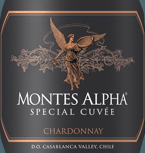 De wijnstokken voor de complexe, rassige Montes Alpha Special Cuvée Chardonnay groeien in de regio van Aconcagua Costa. In het glas heeft deze wijn een diepgele kleur met glanzende gouden accenten. Het uitstekende bouquet onthult intense tonen van tropisch fruit - tonen van ananas en banaan overheersen. Daarbij komen witvlezige perziken met fijne minerale tonen. Dankzij de rijping in vaten worden de aroma's ondersteund door tonen van hazelnoten en vanille. In de mond overtuigt deze Chileense witte wijn met zijn frisse karakter, dat wordt omsloten door een volumineuze body. De zeer aangename zuurgraad begeleidt in de heerlijk aanhoudende nagalm. Vinificatie van de Chardonnay Speciale Cuvée Montes Alpha Van begin februari tot begin april worden de Chardonnay-druiven 's morgens vroeg met de hand geoogst in bakken van 300 kg. Eenmaal in de wijnmakerij worden de druiven ontsteeld, geperst en gedurende enkele uren koud gemacereerd. De most wordt vervolgens gefermenteerd in roestvrijstalen tanks bij 13 à 14 graden Celsius gedurende 25 dagen. Na de gisting wordt 40% van deze wijn gedurende 12 maanden in Franse eiken vaten gerijpt. 60% van deze witte wijn blijft in roestvrijstalen tanks. Spijsadvies voor de Speciale Cuvée Montes Alpha Chardonnay Geniet van deze droge witte wijn uit Chili bij zalmtartaar en verse kreeft. Maar ook bij lichte pastagerechten en rijpe kazen is het een aanrader.