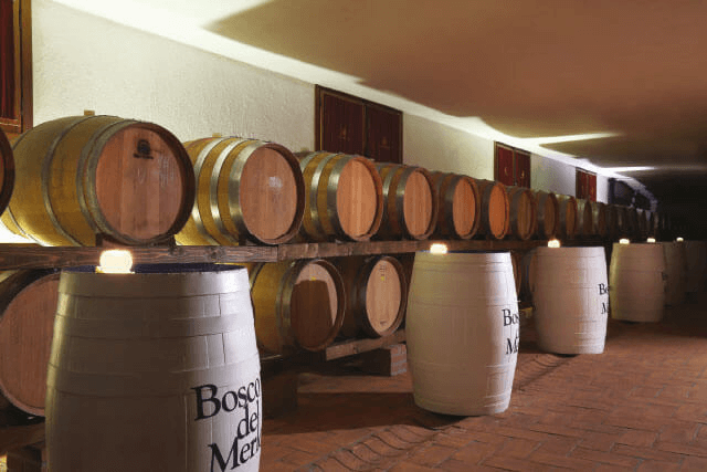 In the wine cellar of Bosco del Merlo