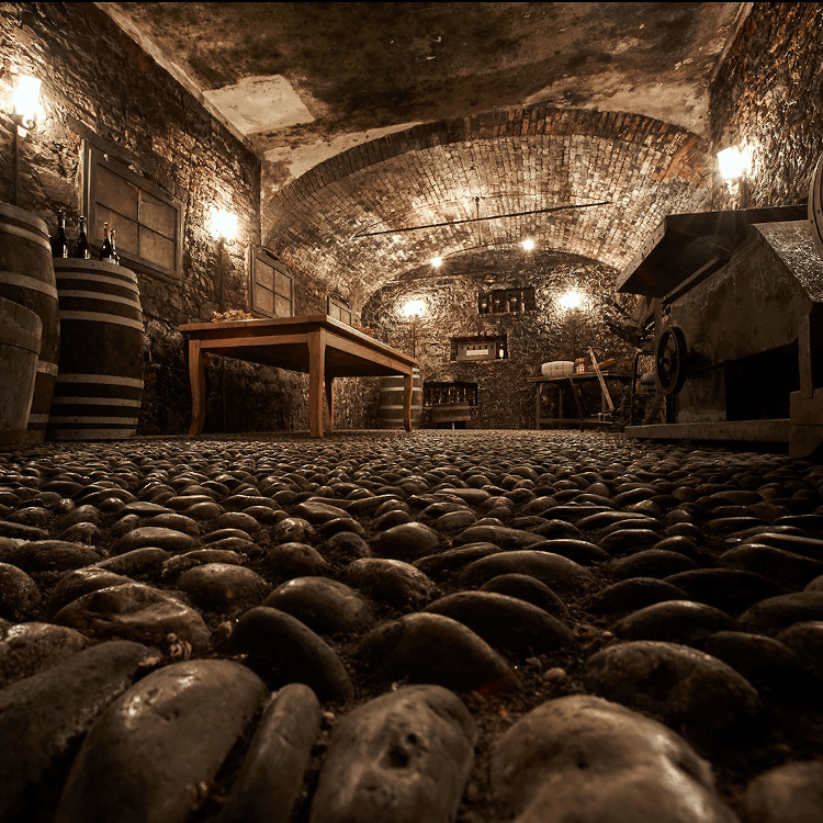 In the wine cellar of Bisol