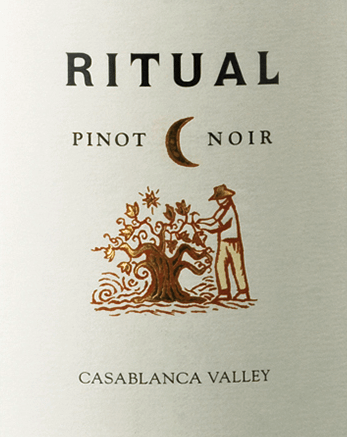 DeRitual Pinot Noir van Veramonte is een uitstekende, single-vineyard rode wijn uit het Chileense wijnbouwgebied Valle de Casablanca Een glinsterend robijnrood met donkerrode accenten schittert in het glas van deze wijn. Het intense bouquet wordt gedragen door zoet rijp rood fruit - frambozen, aardbeien en veenbessen komen naar voren. Daarnaast zijn er fijne minerale hints en kruidige nuances van eikenhoutrijping. De textuur in de mond is heerlijk fluweelzacht met een sappige rijkdom aan rood bessenfruit. De levendige zuurgraad is perfect geïntegreerd in de medium body. De lange, evenwichtige afdronk heeft een prachtige balans van zacht geïntegreerde alcohol en tannine. Vinificatie van de Pinot Noir Veramonte Ritual De Pinot Noir druiven worden zorgvuldig met de hand geoogst, uitsluitend in de ochtenduren. Eenmaal in de kelder van Veramonte, worden de druiven twee keer geselecteerd. Een klein deel van deze Chileense rode wijn wordt vergist in open fermentoren. Tijdens dit proces wordt de drijvende draf (pigeage) met de hand ondergedompeld. Het andere deel wordt eerst geplet en vergist in roestvrijstalen tanks. Nadat de gisting is voltooid, rust deze wijn 11 maanden in Franse eiken vaten. Spijs aanbeveling voor de Ritual Veramonte Pinot Noir Geniet van deze droge rode wijn uit Chili gestoofd rund- of lamsvlees, taijne - bij vlees, gevogelte of vegetarisch - of bij pasta in kruidige sauzen.