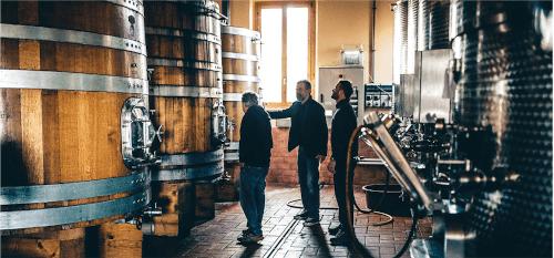 In the wine cellar of Buscareto