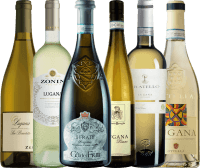 6 bottles Tasting Pack - Lugana Wines from Lake Garda