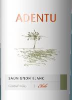 Voorvertoning: Adentu Sauvignon Blanc 2019 - Viña Siegel