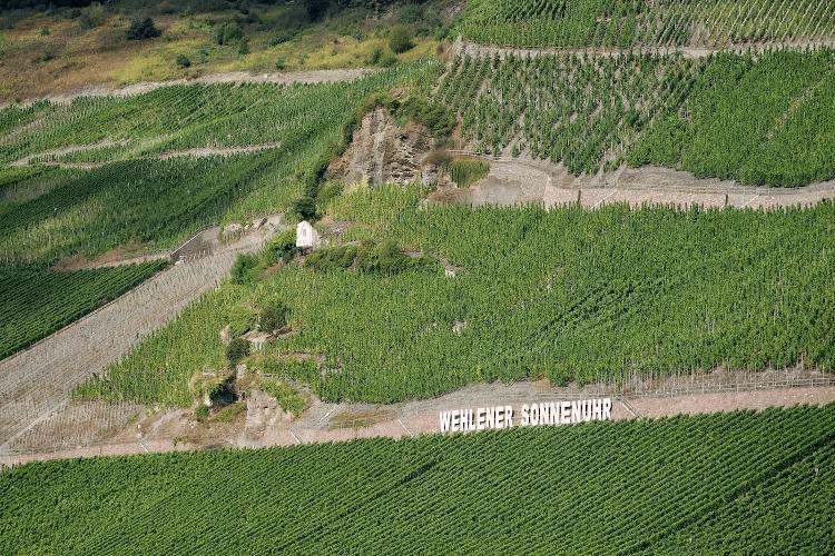 The vineyard Wehlener Sonnenuhr of the vineyard Schloss Lieser