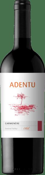 De AdentuCarménère van Vina Siegel glinstert in een rijk kersenrood in het glas. Het bouquet inspireert met krachtige aroma's van rijpe pruimen met subtiele florale en houtachtige nuances. Het gehemelte wordt bedorven door het geconcentreerde fruit en de fijne tannines. Deze Chileense rode wijn is heerlijk zacht en evenwichtig. Vinificatie van deVina SiegelAdentuCarménère Nadat de druiven zijn geoogst, wordt de most vergist in roestvrijstalen tanks. Om deze rode wijn zijn fijne houttoetsen te geven, wordt 5% van deAdentuCarménère gedurende 3 maanden in Amerikaans eikenhout gerijpt. Aanbevolen voedsel voor deAdentuCarménère Geniet van deze droge rode wijn uit Chili bij groentesticks met romige kruidige dipsausjes, gebraden lamsvlees in een kruidenjasje met aardappelpuree of ook bij kruidige kazen - vooral Gorgonzola.