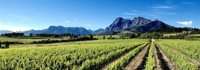 Glen_Carlou_South_Africa