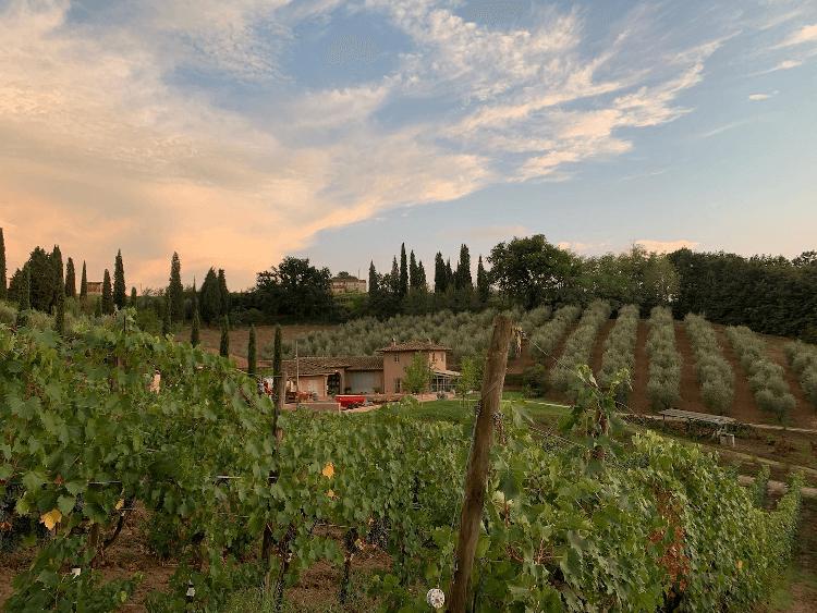Poggiotondo - in the heart of Tuscany