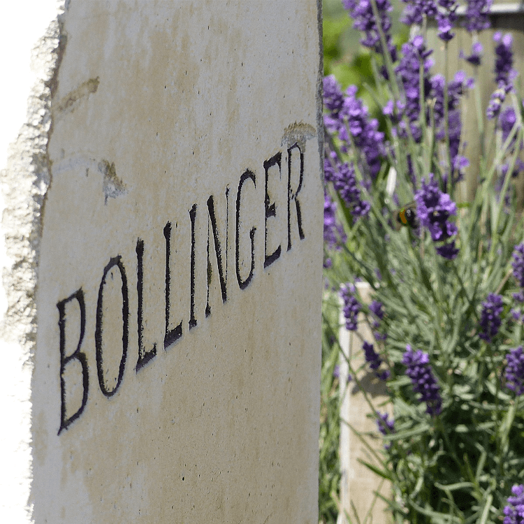 Sparkling pleasure with champagne from Bollinger