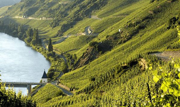 Weingut-Rosch-Lagen-1