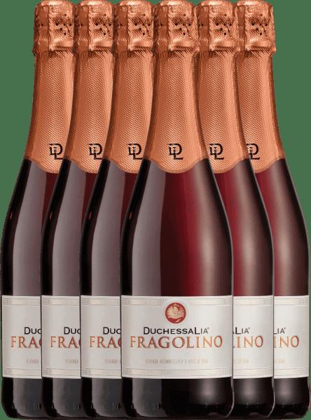 6er Vorteilspaket - Fragolino Rosso - Duchessa Lia