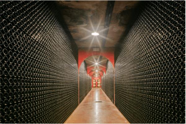 Im Weinkeller von Macia Batle
