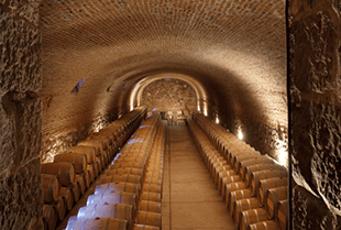 The Bodegas Caro wine cellar