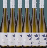 6er Vorteils-Weinpaket - Urban.R Riesling 2019 - Lesehof Stagard
