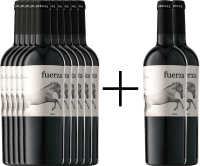 10+2 Vorteils-Weinpaket - Fuerza Jumilla DO 2017 - Ego Bodegas