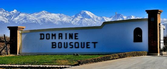 The Argentinean Domaine Bousquet in Mendoza