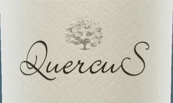 """De topwijnQuercus van Quinta de Quercus wordt alleen in bijzonder goede wijnjaren gevinifieerd van de Tempranillo druif door de twee wijnmakersSam Harrop en Tomás Buendìa. In het glas maakt deze wijn indruk met een diep donker robijnrood. Het veelgelaagde bouquet verwent de neus met de aroma's die typisch zijn voor deze druivensoort: sappige kers ontmoet verse aardbeien en sappige pruim. Het rode fruit wordt ondersteund door verse kruiden - zoals tijm en rozemarijn - en zoethout. In de mond is deze Spaanse rode wijn vol van smaak met een fluweelzachte textuur. De goed gestructureerde body harmonieert perfect met de evenwichtige tannines. De afdronk heeft een prachtige, expressieve lengte en bessennuances. Vinificatie van de Quercus rode wijn De Tempranillo druiven voor deze rode wijn zijn afkomstig van 30 jaar oude wijnstokken in de alleenstaande wijngaarden Viña Ocaña en Camino La Morras. De twee wijnmakers, Sam Harrop en Tomás Buendìa, volgen een duidelijke filosofie van het maken van terroir-gedreven site wijnen van inheemse Spaanse druivensoorten met diepte, elegantie, complexiteit en verouderingspotentieel. De zorgvuldig met de hand geplukte en geselecteerde druiven van de twee enige wijngaarden worden voorzichtig geperst. De resulterende most wordt gefermenteerd in roestvrijstalen tanks onder temperatuurcontrole. De wijn rijpt in totaal 12 maanden in barriques van Amerikaans en Frans eikenhout. Pas dan wordt deze wijn gebotteld. Afhankelijk van het oogstjaar en het verloop van de oogst wordt deze wijn """"gerecreëerd"""" om het hoge potentieel van de tempranillodruiven van de twee locaties optimaal te benutten. Spijs aanbeveling voor de Tempranillo Quinta de Quercus Geniet van deze droge rode wijn uit Spanje gedecanteerdop gezellige avondengewoon solo. Maar deze wijn is ook de perfecte begeleider van uitgebreide wildgerechten en gestoofd vlees."""