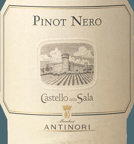 Pinot Nero Umbria IGT 2016 - Castello della Sala von Castello della Sala (Antinori)