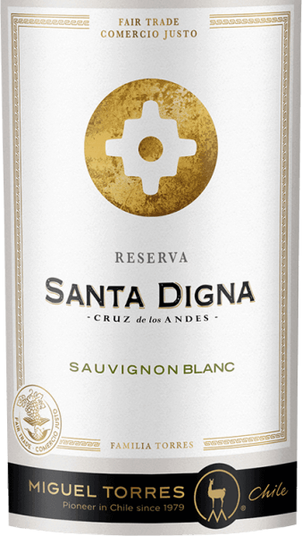 The Santa Digna Sauvignon Blanc Reserva from Miguel Torres Chile is a pure grape variety, fresh white wine from the Chilean growing region Valle Central. In the glass this wine appears in a pale yellow shining colour with greenish highlights. The extremely fresh Bouquet holds black currants, currant leaves and Cassis blossoms ready as well as Mango, citrus and lime aromas, green gooseberries and fine herbs. On the bitter fresh palate this Chilean white wine reveals itself with a wonderful balance between lively acidity, juicy fruit and aromatic freshness. The elegant finish also reveals a lot of fresh fruit from black currants. Food recommendation for Santa Digna Sauvignon Blanc Reserva Enjoy this dry white wine from Chile with all kinds of Asian dishes or with baked fish and chicken fricassee. But also well chilled as an aperitif this wine is a pleasure.
