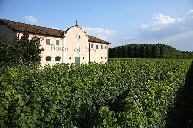 Bosco del Merlo in Veneto