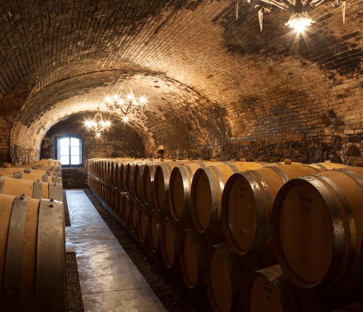 Castello della Sala cellar