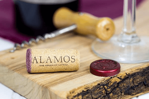 The Argentinian winery Alamos