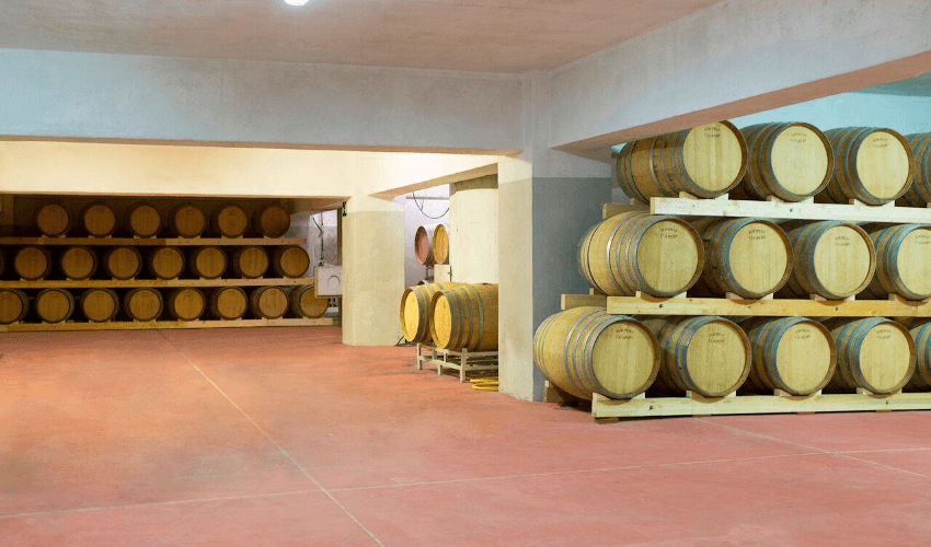 The wine cellar of Cantine Paolini