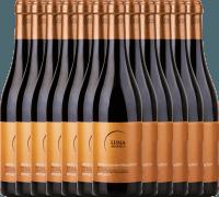 12er Vorteils-Weinpaket - Appassimento Negroamaro Primitivo 2019 - Luna Argenta