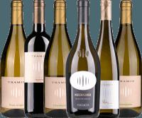 6er Kennenlernpaket - Südtiroler Weine von Cantina Tramin