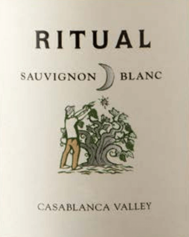 DeRitual Sauvignon Blanc van Veramonte is een uitstekende, zuivere witte wijn uit het Chileense wijnbouwgebied Valle de Casablanca Een helder strogeel met groen-gouden reflecties glinstert in het glas van deze wijn. Het geurige bouquet biedt aroma's die typisch zijn voor de druivensoort - rijpe kruisbessen ontvouwen zich samen met intensieve citrusvruchten en sappige perziken evenals nectarines, vergezeld van filigrane hints van cassisbloesems. Het gehemelte geniet van het frisse en levendige karakter van deze Chileense witte wijn. De citrustonen harmoniëren wonderwel met de heerlijk geïntegreerde zuurgraad, die vergezeld gaat van een minerale toets. De lange afdronk wordt perfect ondersteund door een delicate smelt. Vinificatie van de Veramonte Ritual Sauvignon Blanc De Sauvignon Blanc-druiven voor deze witte wijn groeien op geselecteerde percelen in de Casablanca-vallei. De bessen worden 's nachts met de hand geplukt om de versheid te bewaren. In de wijnkelder worden de druiven twee keer geselecteerd en vervolgens in hun geheel geperst. De most wordt door de keldermeester op drie verschillende manieren vergist: 30% van deze most gaat in betonnen eieren, 30% in eiken vaten en 40% in roestvrijstalen tanks. Door de verschillende gistingsmethoden kan het hele spectrum van aroma's zich op een natuurlijke manier presenteren. Na de gisting blijft deze witte wijn 8 maanden op de fijne droesem met 14 dagen batonnage (omroeren van de gist). Spijs aanbeveling voor de Sauvignon Blanc Ritual Veramonte Geniet van deze droge witte wijn uit Chili bij verse vis van de grill, mosselen in witte wijn bouillon, knapperige salades met kipfilet of ook met geitenkaas.