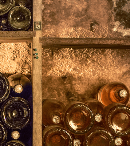 In the wine cellar of Louis Roederer