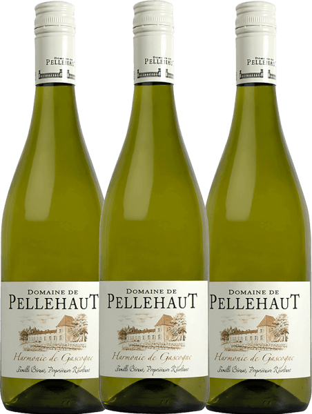3er Vorteils-Weinpaket - Harmonie de Gascogne Blanc 2019 - Domaine de Pellehaut