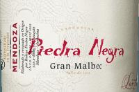 Voorvertoning: Gran Malbec 2015 - Bodega Piedra Negra