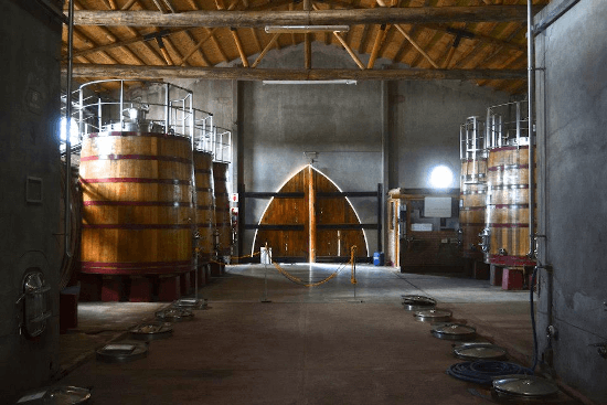 In the wine cellar of the Domaine Bousquet