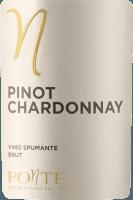 Voorvertoning: Pinot Chardonnay Brut - Ponte