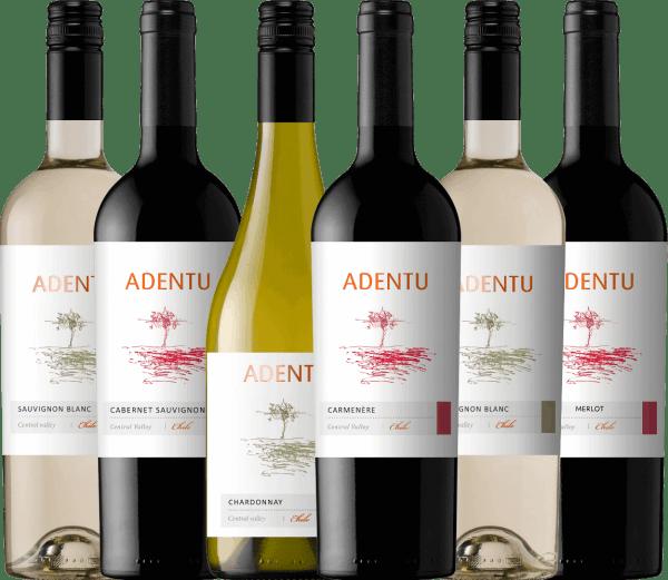 Het is de filosofie van Viña Siegel dat de wijnen een geheel eigen identiteit uitstralen, het Chileense land weerspiegelen en altijd van uitstekende kwaliteit zijn. Ook in het team van dit wijnhuis zijn de pijlers inzet, respect, verantwoordelijkheid en doorzettingsvermogen. Beide aspecten komen perfect samen in de wijnlijn Adentu. De wijnen van Adentu zijn harmonieus en evenwichtig en bezitten een geheel eigen persoonlijkheid, eigen aan de druivensoort. Geniet van de Chileense Adentu wijnen van Viña Siegel met dit 6-pack. Het kennismakingspakket van Adentu wijnen vanViña Siegel omvat 2 flessen: Adentu Sauvignon Blanc (droog - 13,3 Vol%) 1 fles: Adentu Chardonnay (droog - 13,4 Vol%) 1 fles: Adentu Cabernet Sauvignon (droog - 13,2 Vol%) 1 fles: Adentu Carménère (droog - 13,2 Vol%) 1 fles: Adentu Merlot (droog - 13,4 Vol%)