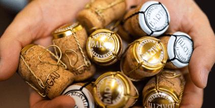 Rheingau sparkling wine from the Barth winery