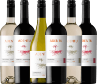 6-pack get-to-know - Adentu wines from Viña Siegel