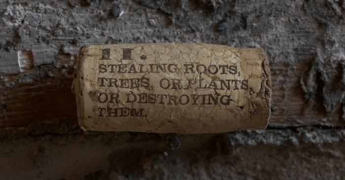 A cork - a crime