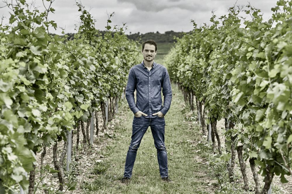 Tobias Krämer in seinen Weinbergen
