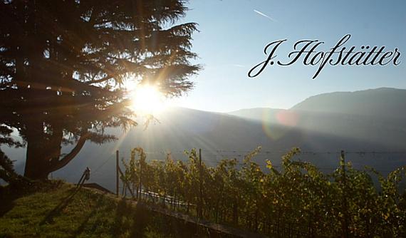 Hofstaetter Winery